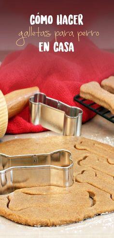 Consiente a tu perro con este tip de cómo hacer galleta y dale un premio casero cada vez que lo merezca.