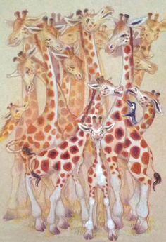 Casey G. - giraffes