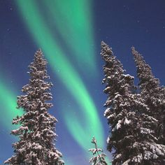 Aurora – Northern lights in Lapland, Finaland. Photo by Visit Finland See The Northern Lights, To Infinity And Beyond, Perfect World, Science And Nature, Night Skies, Beautiful Landscapes, Cosmos, Beautiful World, The Great Outdoors