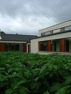 The Zig Zag House, Co. Meath by Dorman Architects, via Flickr Zig Zag, Architects, Potato, Garage Doors, Houses, Outdoor Decor, Home Decor, Homes, Potatoes