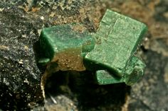 Autunite pseudo Torbernite, Entraygues, France (Coll. B.Livens) 1982