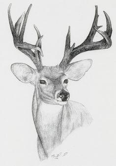 My Dads mid buck Randy Ulmers Wifes Ram Matt Liljenquists Archery Grand Slam + One Wild Animals Drawing, Deer Drawing, Animal Drawings, Art Drawings, Wood Burning Patterns, Archery, Line Art, Coloring Pages, Moose Art