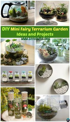 Create your own Mini Fairy Terrarium Gardens with these miniature terrarium gardens, small water gardens, or both. via @diyhowto
