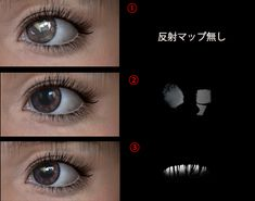 cornea_ref