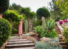 succulent garden | Garden, : Amazing Succulent Garden Decoration Design With Cream Stone ...
