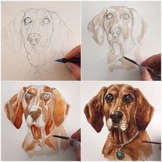Original Paintings and drawings of your pets by by BlueshineArt Pet Portraits, Painting & Drawing, Your Pet, Moose Art, How To Draw Hands, Original Paintings, Pets, Drawings, Animals
