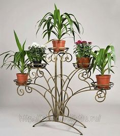 Stand - Home Dekoration Balcony Plants, House Plants Decor, Plant Decor, Indoor Plants, Garden Art, Garden Design, Modern Plant Stand, Flower Stands, Iron Art