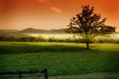 Cades Cove, TN is one of my favorite vacation spots Free to enter the Smokey Mtn park & with views like this what are you really waiting for?