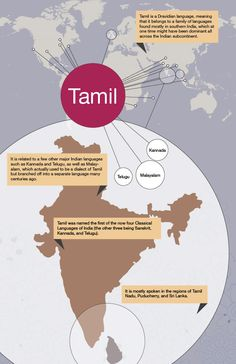 Tamil Language Infographic	http://www.mapsofworld.com/pages/tongues-of-world/infographic/infographic-of-tamil/