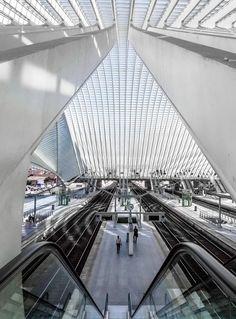 liege-guillemins-tgv-railway-station-in-belgium-designed-by-the-architect-santiago-calatrava