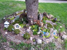 Pic from my fairy garden 2014