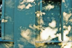 valscrapbook:   Kollwitzplatz by Lillian Wilkie