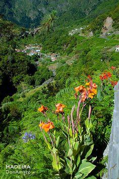 Lombo do Urzal, Madeira Island. Tags: #madex #donamaro #Portugal