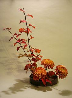 Ikebana Sogetsu style | Basic upright style moribana 750x1024 365 Days of Ikebana Day 129