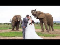 Theunis and Chantel | Askari Game Lodge & Spa wedding video. Wedding video by JC Crafford Photography.