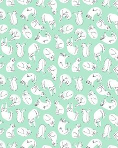 Wallpaper Cats More Lara Cat Pattern Prints White