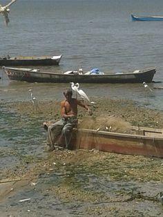 Um olhar sem filtro.   O que sobrou do Mar de Sepetiba-RJ .  O mar se foi , O homem ficou E a esperança ? Foto Sandra Dias