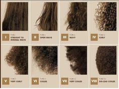 Natural hair typing system