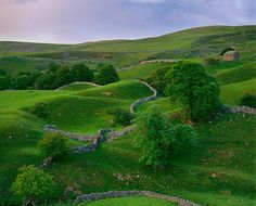 "English hillside - looks like a scene from ""Sense and Sensibility."""