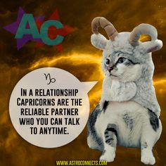 www.astroconnects.com #astrology #horoscope #zodiac #cat #cats #compatibility #love #catinspace #catsinspace #astrocats #capricorn