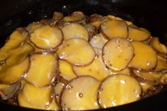 Cheeseburger scalloped potatoes   a slow cooker meal - I used a 6QT      1 pound ground beef, browned and drained of excess fat  6 potatoes, scrubbed and sliced thin (peel if that is your preference)  3 T flour  2 T dried onion  rounded 1/2 t thyme leaves, crushed  garlic salt  pepper   1 1/2 c beef stock  1/2 c milk   2 c grated cheddar cheese - divided      Slice 3 of the potatoes and place in the bottom of a slow cooker, sprinkle with garlic salt, pepper and half of  the flour. Add the…