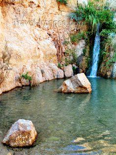 Ein Gedi, Israel -Just Gorgeous!!