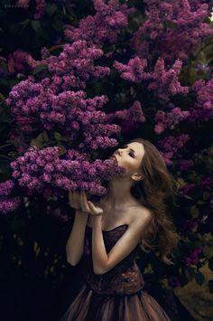 Lilac by rossalev-andrey.deviantart.com on @deviantART