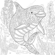 Adult Coloring Pages. Dolphin. Zentangle Doodle Coloring Pages