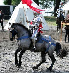 Joram van Essen on his Murgese stallion Zogo (photo by Renate Skeie)