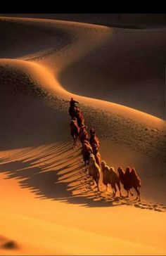 """A caravan of """"freeman"""" hoping to escape death from former friends and family. Desert Sahara, Deserts Of The World, Desert Colors, Arabian Nights, Moon Art, Amazing Nature, Beautiful Landscapes, Photo Art, Best Selfies"""