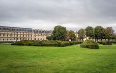 Lovely hedges and lawn at the Tuileries Garden in Paris.