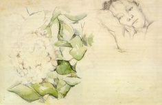 Madame Cézanne (Hortense Fiquet) avec Hortensias - (Paul Cezanne)
