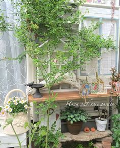 "Shabby and Charming: In Japan, a great ""shabby garden"""