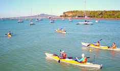 A 6 hour sunset kayak tour from Auckland through Waitemata Harbour to Rangitoto Island. Night kayaking under the beautiful Auckland night sky and all its glistening stars. Bus Pass, Arm Muscles, Kayak Tours, Island Tour, New Zealand Travel, Kayaks, Auckland, Volcano, Night Skies