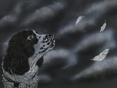 Painting a Springer Spaniel in Acrylic creating a custom pet portrait in light-fast acrylic paint on canvas By Ellie Burdett The goal this week is to paint a pet portrait in acrylic paint on canvas… Springer Spaniel, Acrylic Painting Canvas, Pet Portraits, Fur Babies, Pets, Artist, Animals, Animales, Animaux