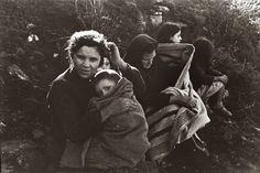 Búscame en el ciclo de la vida: 514. El exilio republicano español de 1939 desde l...