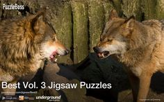 Best Vol. 3 Jigsaw Puzzles by PuzzleBoss