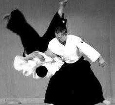 aikido_153409624.gif (290×263)