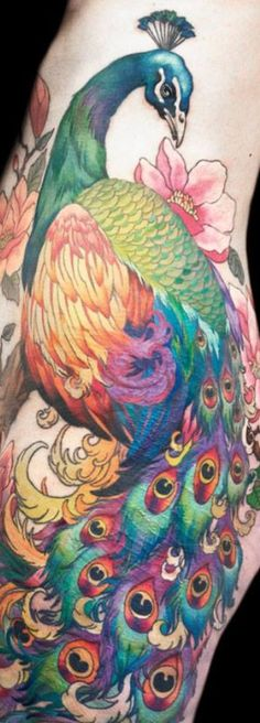 A peacock would definitely be one of my tattoos if only my skin could handle them ...this one is Gorg!