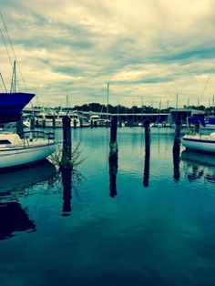 Mail - Edward Held - Outlook Louisiana West End Marina - lunch today ~~ sho buz photo