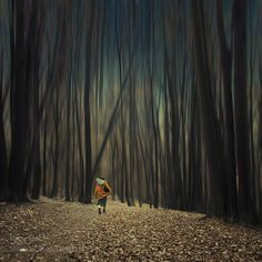 Alone in the forest - Pinned by Mak KhalafBEST TUTORIALS COLLECTION 2014 & 2013 l HOW IT's MADE l PURCHASE the PRINT Photo manipulation based on my own stock photography. If you like this work or any other of mine you can order the TUTORIAL'S  PSD file. For more information please see the link's below PSD-Tutorials & Special Tutorials or Learn Photoshop Online If you like my work you can support me on facebook to Thank you very much for your time and appreciation. Fine Art…