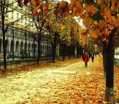 reminiscent of trip to Paris in October, 2011