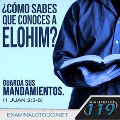 https://flic.kr/p/EzR9vN | FB Pic 51 (spanish)