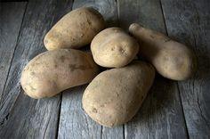 Αρχείο:Ποικιλία πατάτας Liseta.jpeg