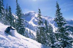 Skiing deep powder in Telluride Colorado