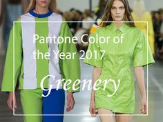 Greenery Is The 2017 Pantone Color of the Year  #greenery #pantone