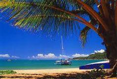 beau paysage de bord de mer avec des palmiers.