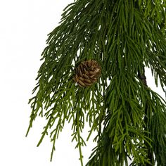A long evergreen cedar pine garland made of realistic looking green pine wired foliage. Small pine cones accent the branches. Great natural look with the added durability of a synthetic so it will not dry out. Small Christmas Trees, Outdoor Christmas Decorations, Christmas Colors, Christmas Time, Vintage Christmas, Christmas Ideas, Christmas Crafts, Xmas, Pine Garland
