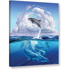 Jerry Lofaro Dolphonic Symphony Gallery-Wrapped Canvas, Size: 24 x 32, White