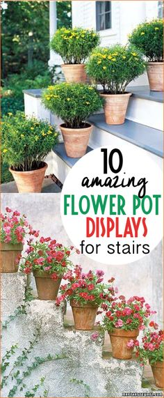 Amazing Flower Pot Displays on Stairs. Flowerpots you can't resist. Tips and tricks to perfectly potted and cared for pots. Decorate your porch and patio with the perfect arrangements.
